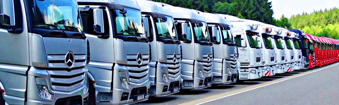 Technik transportu drogowego oraz kierowca mechanik